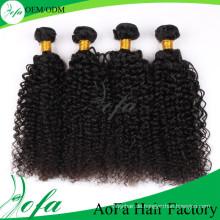 Heiß-Verkauf 7A hochwertige verworrene lockige Welle Jungfrau mongolischen Haar