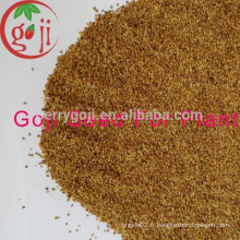 Goji Farm offre des graines de baies de goji élevées de qualité supérieure / NQ-01