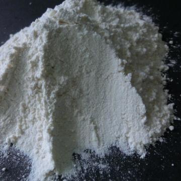 Dehydrated Garlic Powder New Crop