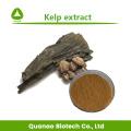 Kelp extract laminarin kelp powder feed grade