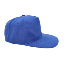 Factory price 5 panel snapback cap plain snapback cap hat custom baseball cap logo