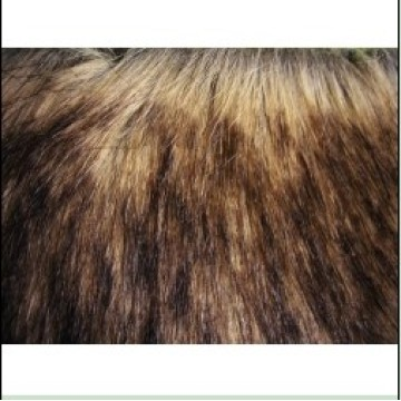 Long Hair Faux Fur