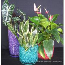 Bunte Wasserpflanze Blumengelee Kristallboden