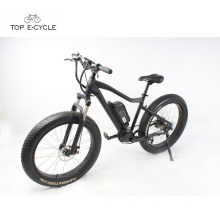 48V 750W 8Fun mid drive motor fat tire snow electric bike for sale