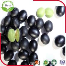 Frijoles Negros para la Venta / Black Bean with Green Kernel