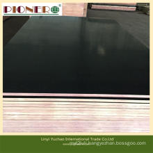 18mm Film Faced Plywood with Whole Core for Africa Market