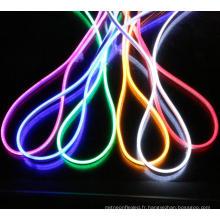 Bande flexible d'éclairage de corde de néon de 110V 330FT (100m) LED pour la décoration extérieure