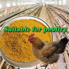 Лучшая цена на желтый кукурузный глютен 60% 50 кг мешок куриного корма