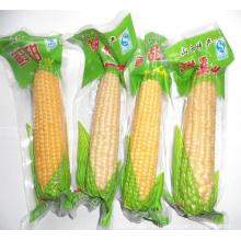 Corn Vacuum Plastic Packing Bag