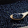 Wholesale Dry Black Beans From High Quality Soil