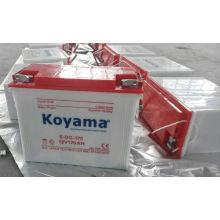 Koyama 12V Elektrische Dreirad Rohrplattenbatterie 170ah