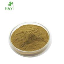 Capsules d'artichaut de conception naturelle poudre d'extrait d'artichaut