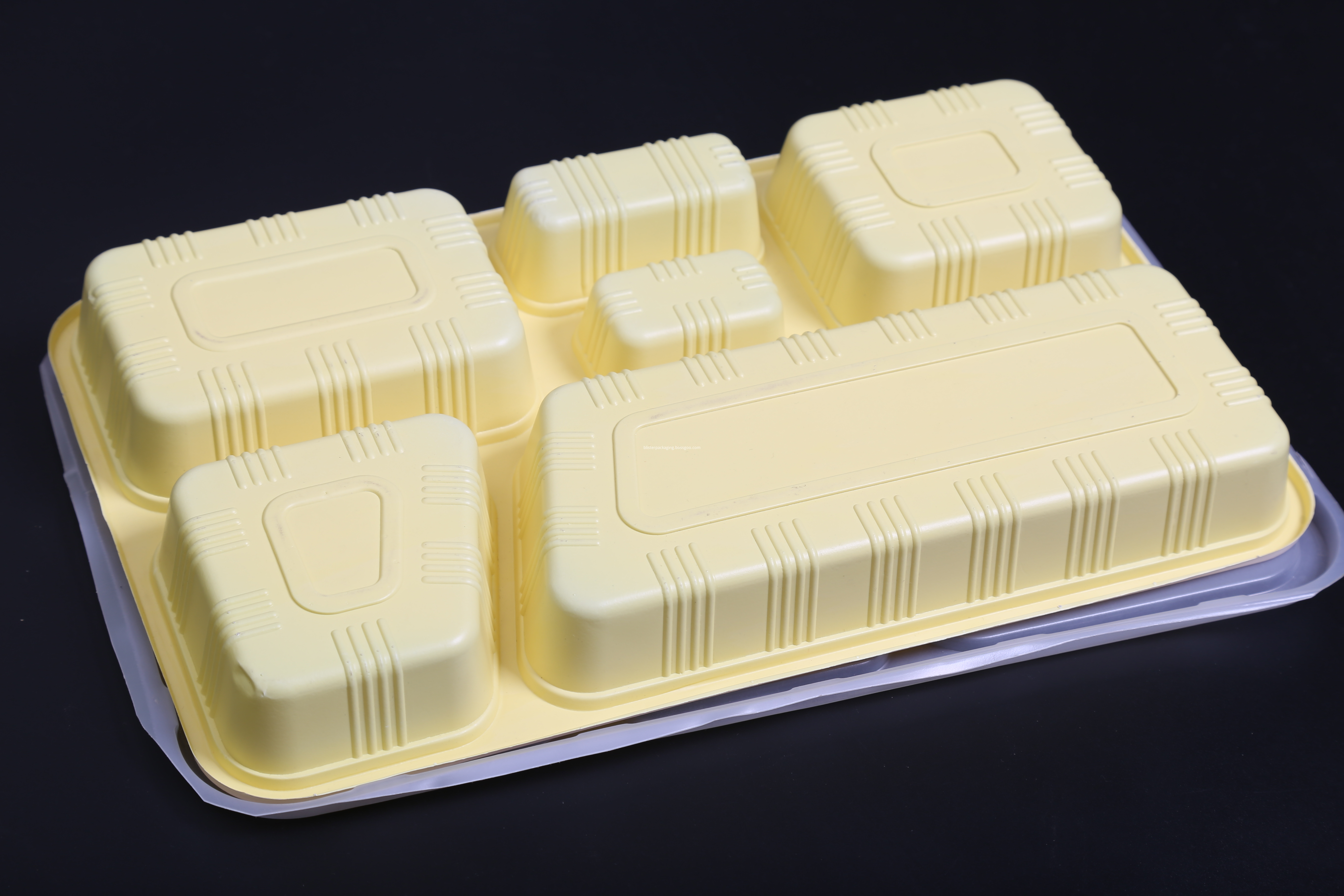 6 compartment food tray