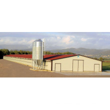 Steel Structure Confined Chicken Poultry House (KXD-PCH1)