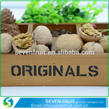 High Quality raw walnuts for sale cheap price China