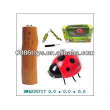 2013 Venda quente 4CH RC Animal, Controle Remoto Coccinella Septempunctata, Infravermelho RC Animal Toy