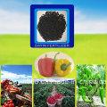 Engrais organique microbienne pour les légumes fruits arbres plantes