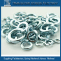 SUS304 / A2 Stainless Steel Spring Washer