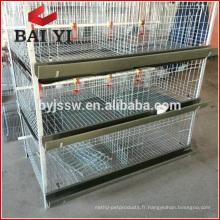 Fournisseur deCages à Poussins / Cages à Volaille / Caisses de Poussins