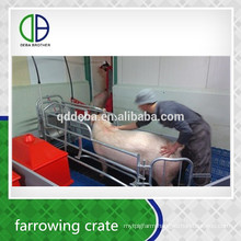 Hot Galvanzie Factory Supply Durable Quality Farrowing Pens For Pigs