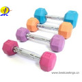 Gym Fixed Coloré Rubber Coated Hex Dumbbell