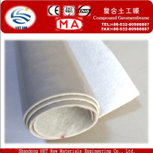 One Geotextile and One PE Liner Compound Geomembrane