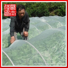 China Wire Mesh Town insect mesh screen for greenhouse projection