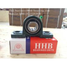 Bearing, Pillow Block Bearing, Ucp206 Bearing