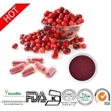 Extracto de arándano de calidad alimentaria de alta calidad con 25% de antocianina PAC 5% -70%