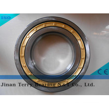 The High Speed Low Noise Cylindrical Roller Bearing (NJ2309EM)