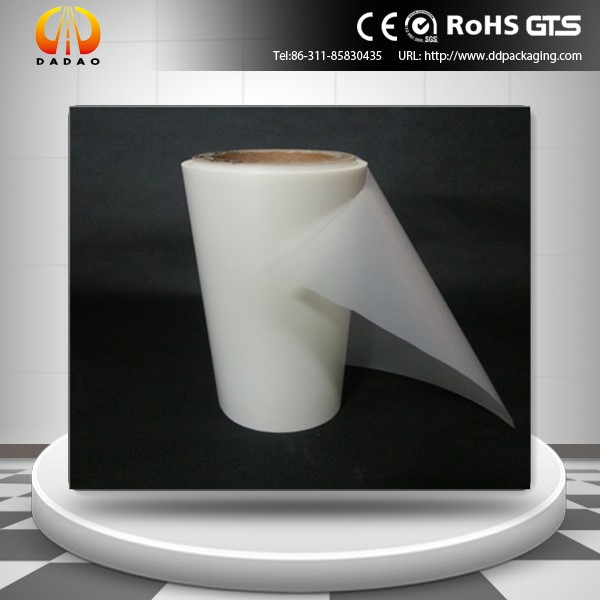 PET anti UV film (21)