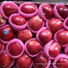 huaniu apple price tianshui huaniu Gansu huaniu