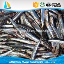 Vente chaude meilleur poisson entier d'anchois iqf