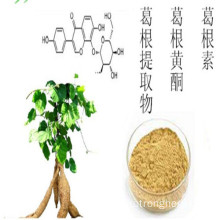 Pueraria flavonoids chiết xuất bột kudzu Chiết xuất từ ​​rễ Puerarin