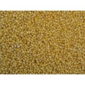 Chinese Yellow Millet
