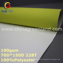 100%Polyester Waterproof Functional Fabric for Coat Garment (GLLML262)