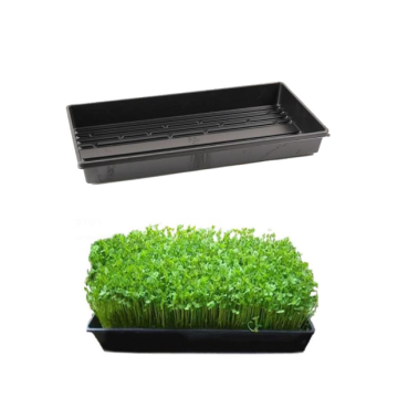 Hydroponic Trays Climatic Seed Germination