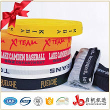 Cheap customized jacquard weave woven elastic webbing tape