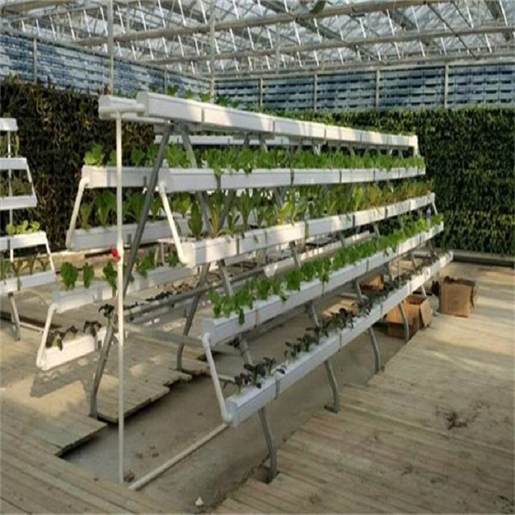 Greenhouse-Hydroponics-NFT-system-for-agriculture