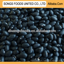 price of black kidney bean for europe