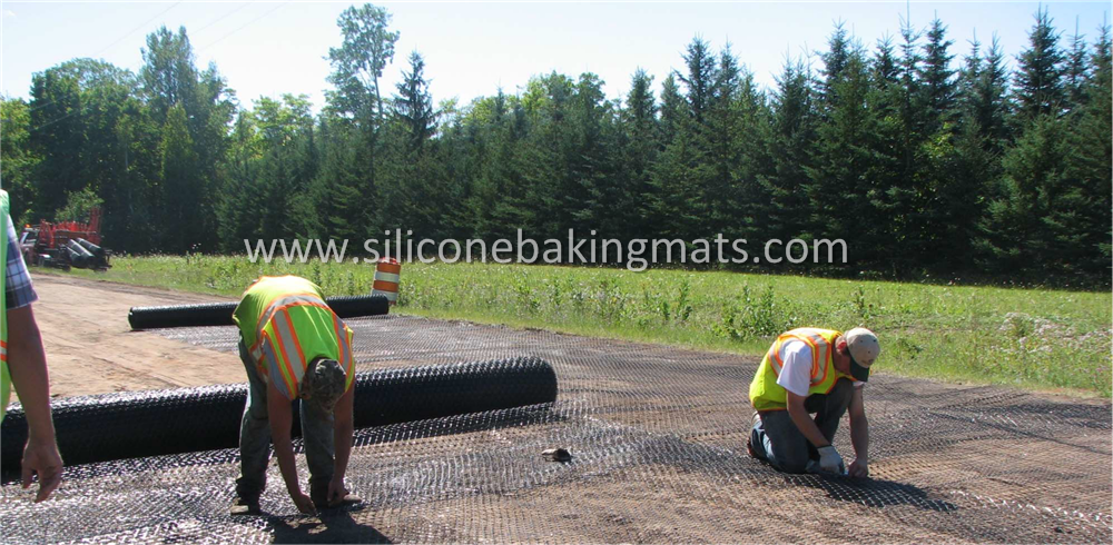 Geogrid Ground Reinforcement