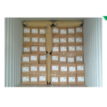 Container air bag