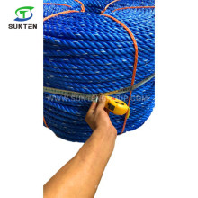 16mm Blue PP/Polypropylene/Plastic/PE/Fishing/Marine/Mooring/Twist/Twisted Danline Rope for Philippines