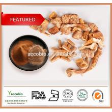 Extracto orgánico de Agaricus blazei / Extracto de seta de Brasil / Extracto de seta Agaricus de alta calidad