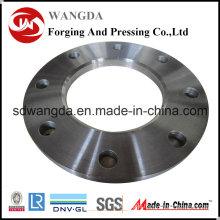 Custom Alloy Steel Plate Flange for Pipe