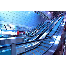 Hot Sale Escalera Huzhou Fabricante