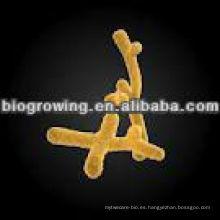 BI-G201 Bifidobacterium infantis