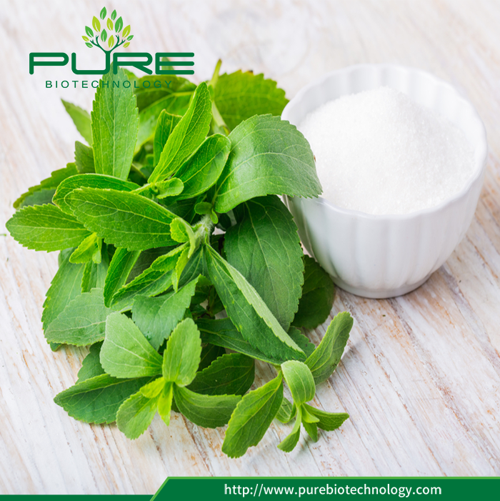 Stevia Leaves Extract Natural Sugar Substitute (4)