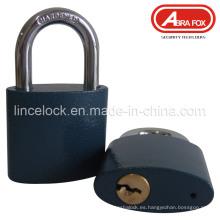 Seguridad de alta seguridad de hierro gris de hierro candado de tipo oval (303)