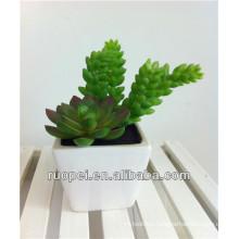China Wholesale Artificial potted Mini Succulent Plants
